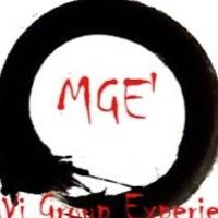 MaVi Group Experience