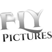 Flypictures