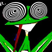 FrogDj