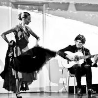 Impetus flamenco